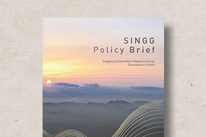 SINGG Forum Policy Brief